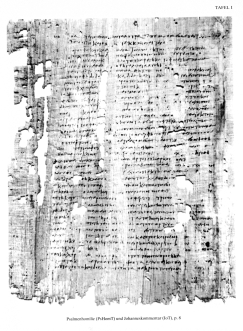 Tura Codex VIII