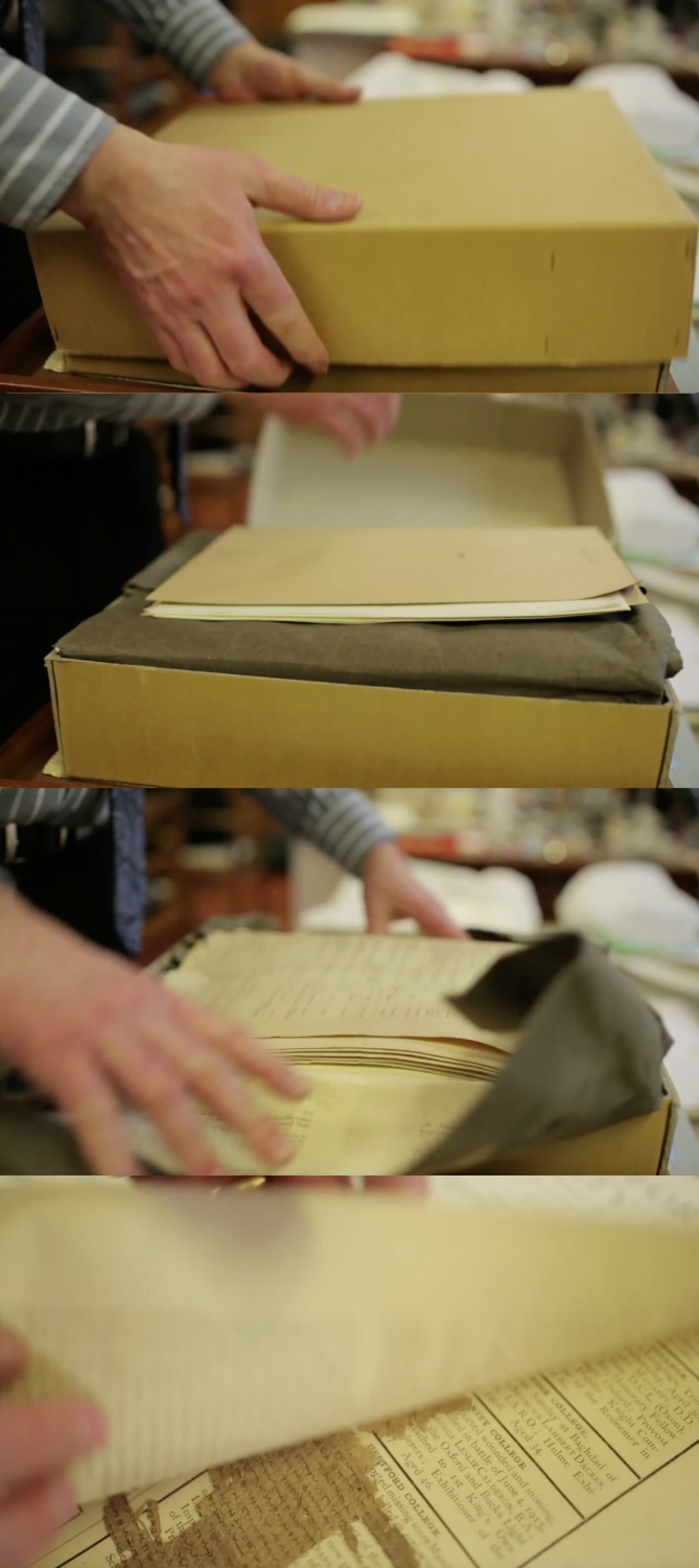 Oxyrhynchus Cardboard Boxes
