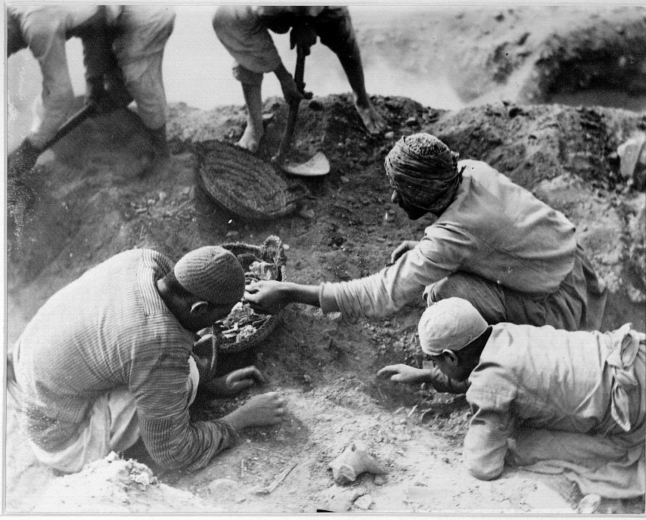 Oxyrhynchus Papyri Excavation