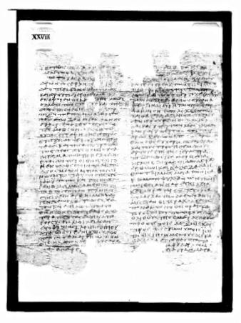 Paris Philo Codex