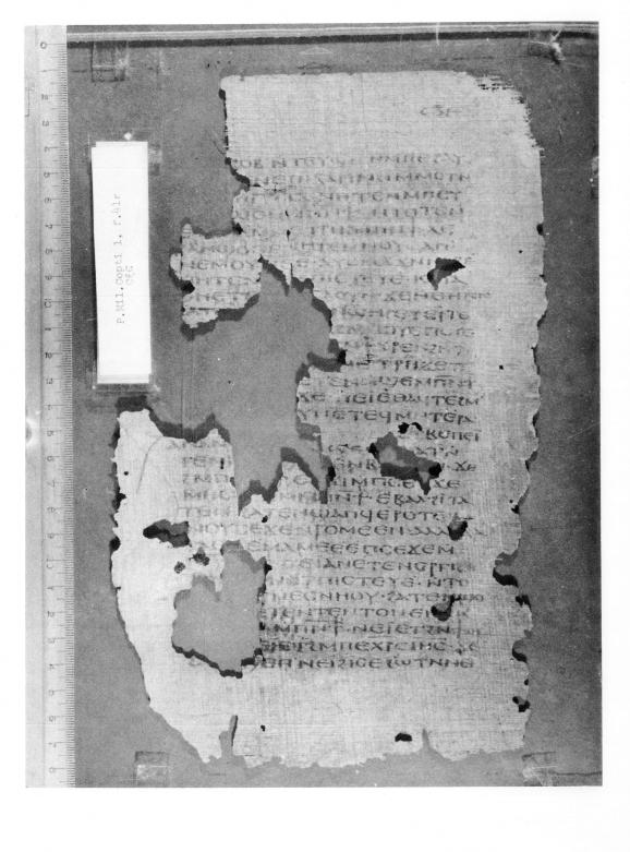 PMilVoglCopt 5 Pauline Letters 1