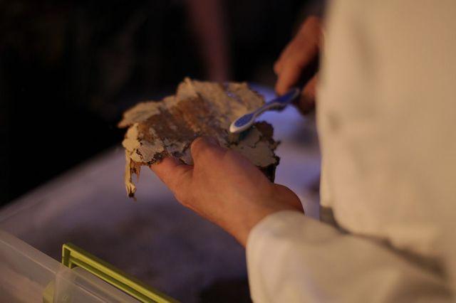 obbink passages mummy cartonnage
