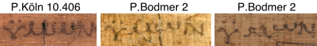 P118 and PBodmer 2 detail label